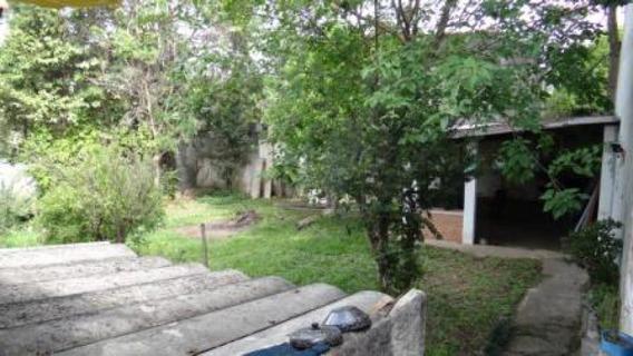 Terreno Residencial À Venda, Vila Albertina, São Paulo - Te0050. - Te0050