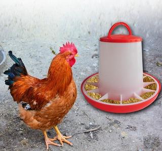 Comedero Para Pollos De 3kg Con Tapa