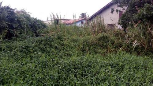 Terreno No Bairro Balneário Gaivota, Em Itanhaém - 7045