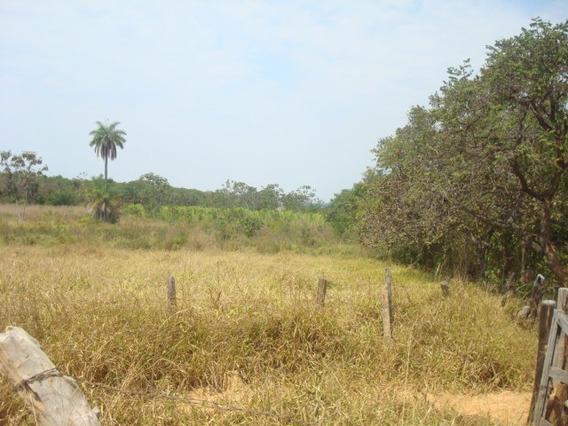 Fazenda Com 3 Quartos Para Comprar No Zona Rural Em Morada Nova De Minas/mg - 3407