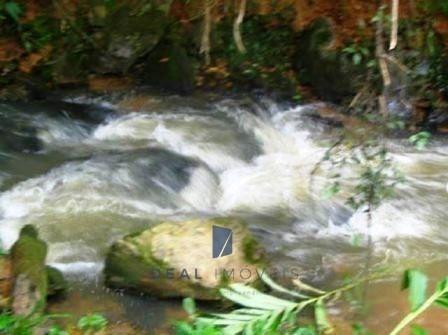 Sítio Venda Ponte Alta Pilar Do Sul Sp - 04534-1