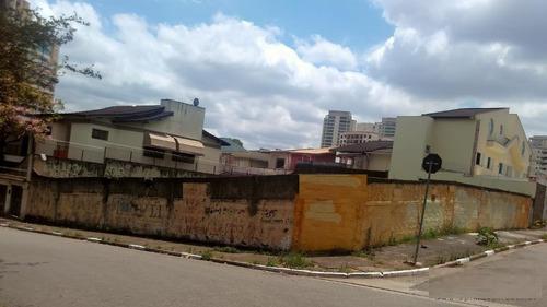 Terreno Residencial À Venda, Jardim Avelino, São Paulo. - Te0304