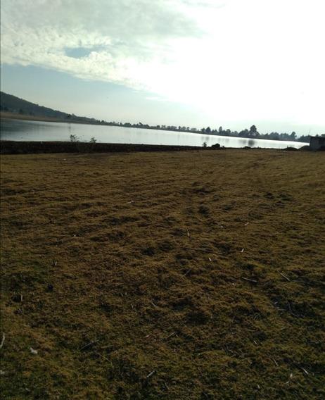 Vendo Bonito Terreno De 1,400 M2. Villa Victoria Edo Mex.