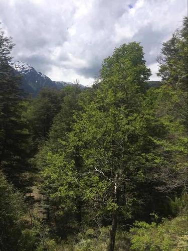Hermoso Terreno Ubicado En El Valle De Las Trancas