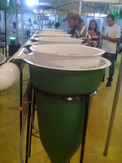Incubadoras Para Ovos De Peixes Cap. 60l