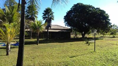 Chácara 20.000m (2ha) Escriturada Com Casa, Piscina E Campo.