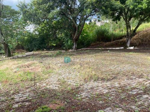 Imagem 1 de 8 de Terreno À Venda, 420 M² Por R$ 250.000,00 - Quintas Das Avenidas - Juiz De Fora/mg - Te0232