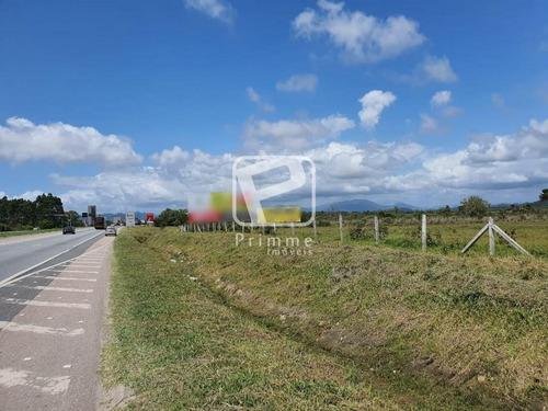 Imagem 1 de 5 de Terreno A Venda Em Porto Belo - 5148