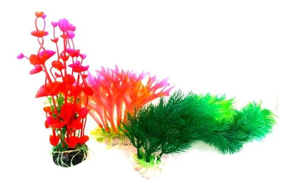 Planta Ornamentais Sortidas P/ Aquário C/ 3 Unidades