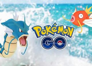 Pokémon Go Caramelos Magikarp X400