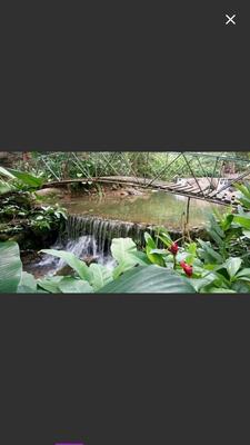 Vendo Sitio Na Serra Do Mar Com Cachoeiras E Piscina Natural