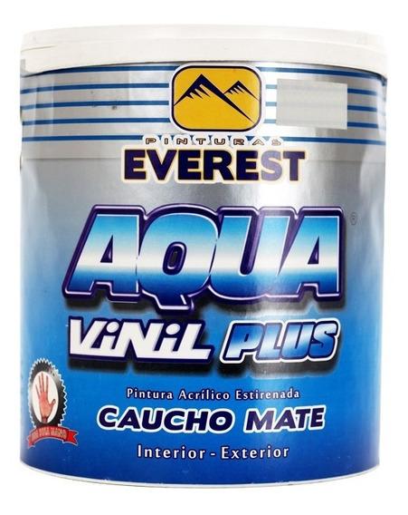 Pintura Caucho Int. Aguamarina Gal Everest Clase A (1062854)
