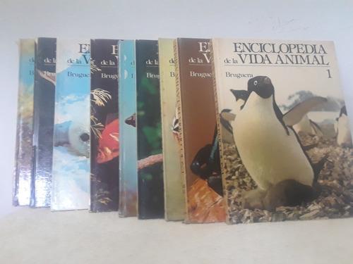 Enciclopedia De La Vida Animal.