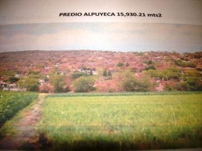 Terreno Urbano En Alpuyeca / Xochitepec - Plu-316-tu*