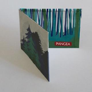 Pangea Billetera De Tyvek Wald