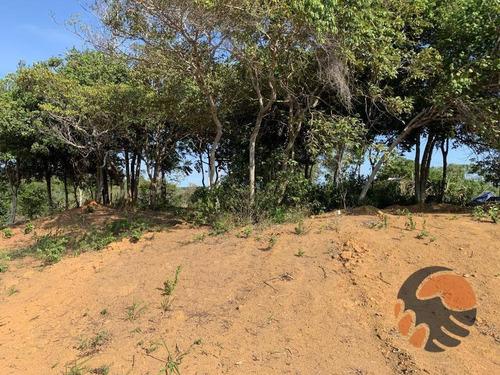 Chácara À Venda,  2000 M² - Jabuticaba - Guarapari/es - Ch0012