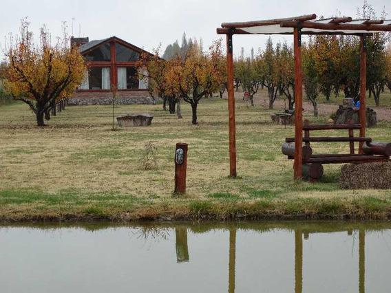Complejo De Cabañas Y Viñedos En Venta En San Rafael Mendoza