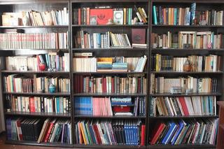 Lote Coleccion 870 Libros Usados Diversas Tematicas