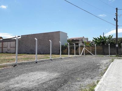 Terreno Para Alugar, 1572 M² Por R$ 70.000/mês - Centro - Balneário Camboriú/sc - Te0078