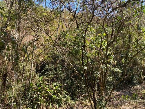 Imagem 1 de 14 de 7a Igaratá Terrenos