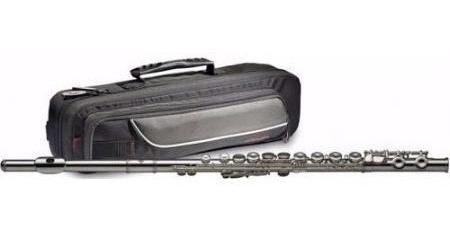 C Flauta Traversa 16 Llaves Con Estuche Stagg Wsfl111