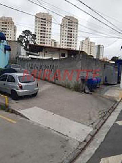Terreno Em Imirim - São Paulo, Sp - 326120