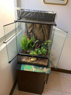 Terrario Para Reptil