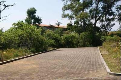 Venta De Terrenos Y Casas En Totolapan, Morelos