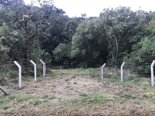 Chácara A Venda No Bairro Centro Em Bocaiúva Do Sul - Pr.  - 217-1