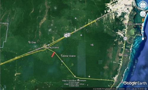 Imagen 1 de 10 de Oportunidad Inversionistas Terreno En La Ruta De Los Cenotes