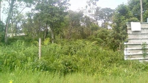 Imagem 1 de 3 de Terreno Plano , Em Itanhaém.