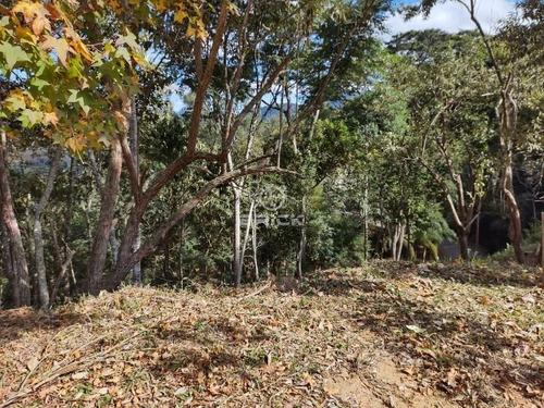 Imagem 1 de 22 de Terreno Em Condomínio Em Vargem Grande - Te00347 - 68717788