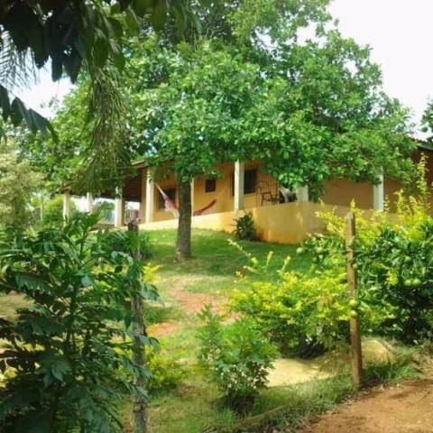 Chácara Rural À Venda, Lotm Cananéia, Pilar Do Sul. - Ch0204