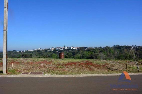 Terreno À Venda, 300 M² Por R$ 255.000,00 - Colônia Dona Luiza - Ponta Grossa/pr - Te0041