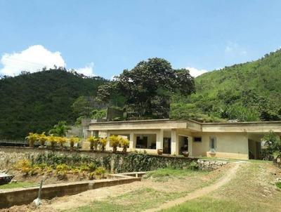 Casa En Venta Lomas De Palmarito Maracay Edf 18-10313