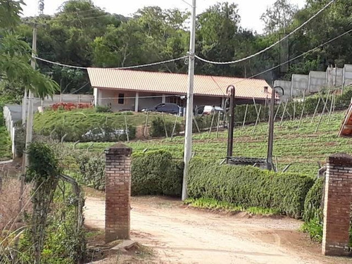 Cód 3416 - Chácara Em São Roque - 3416