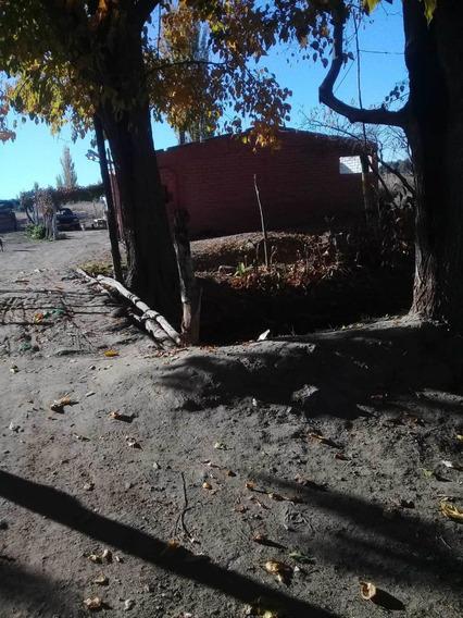Chacra En Lavalle Mendoza