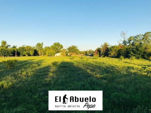 Vendo Terreno En Luis Palacios. Lote De 550 M2. Entrega Inmediata