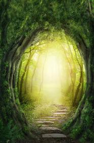Fundo Fotográfico Tecido Portal Da Floresta 1,70m X 3,00m