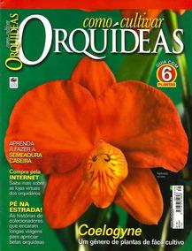 Revista Como Cultivar Orquídeas 39