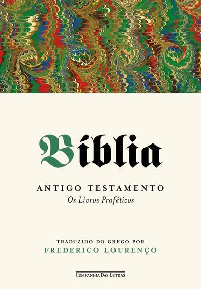 Bíblia Antigo Testamento - Os Livros Proféticos - Vol.