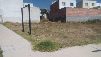 Varios Terrenos Comerciales En Renta En Villamagna