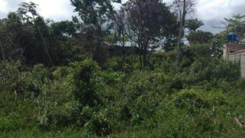 Terreno Lado Praia Medindo 312 Mts Em Itanhaém - 4845   Npc