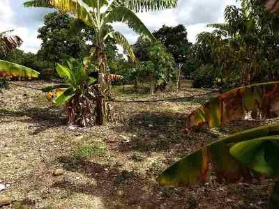 En Venta Terreno Con Árboles Frutales En La Colonia Villahermosa, Tuxtla Gutiérrez