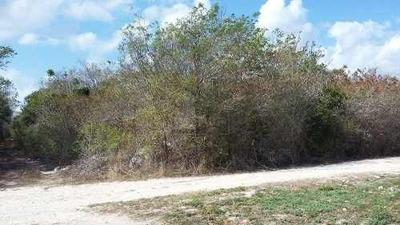 Terreno Habitacional En Venta, Puerto Morelos, En La Zona Urbana, 10,000 M2 ,para Desarrolladores,