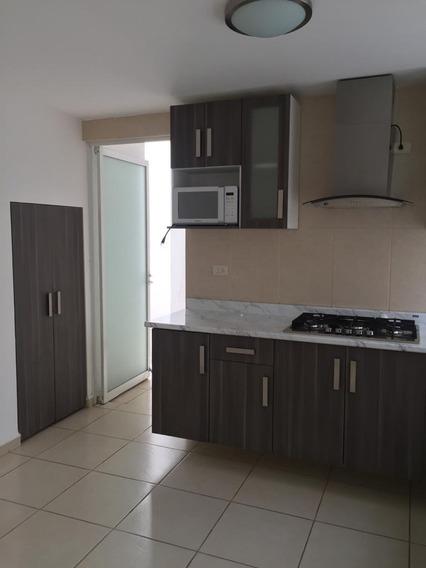 Casa En Renta, En Fracc. Residencial Villaverde, Slp.