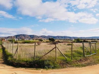 Sector Piuchén, Valle De Colchagua, Sext