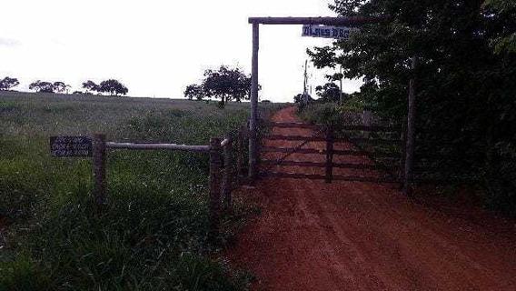 Fazenda - Centro - Ref: 3565 - V-3565