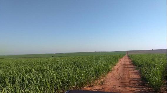 Fazenda Para Venda Em Guararapes, Centro - 1067