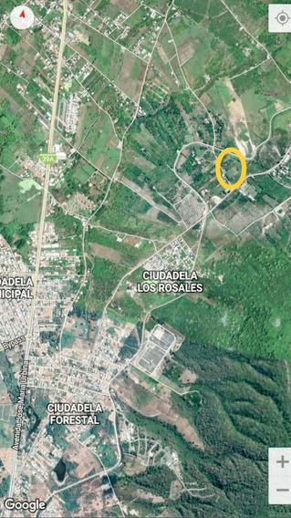 Vendo 3 Has Sector Parque Forestal. Portoviejo